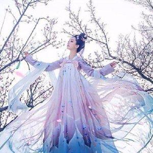 Frauen-Weinlese chinesische traditioneller Tanz Cosplay Kostüme elegante Fee Leistung Hanfu Stickerei Oriental Tang altes Kleid
