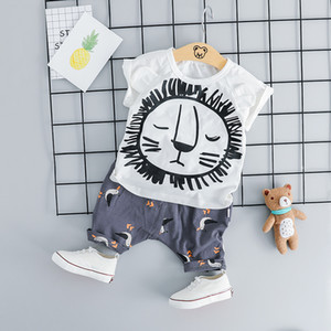 HYLKIDHUOSE 2019 Summer Baby Girls Boys Clothing Sets Infant Clothes Suits Cartoon T Shirt Shorts Kids Children Casual Costume Y200525