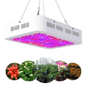 led ışıklar büyümek RECmeded Yüksek Maliyet-etkin Çift Cips tam spektrum led Bitkiler büyümek ışık 300 W / 600 W / 800 W / 1000 W / 1200 W / 1500 W / 1800 W / 2000 W