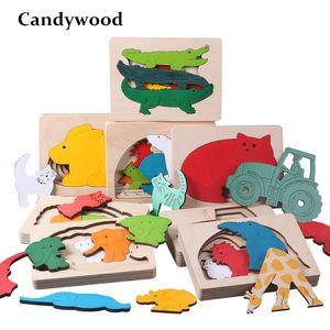 Candywood Novas Crianças Brinquedo Animal Dos Desenhos Animados 3d Puzzle Multilayer Jigsaw Puzzle Bebê De Madeira Brinquedos Criativo Infantil Cedo Educacional Y19070503