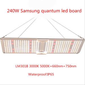 NEW samsung LM301B 3500K quantum led board full spectrum Led Grow light Version Plant Lamp 120w 240w IP65