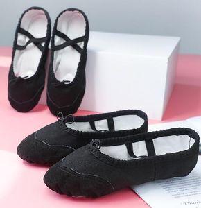 2019 hot 2 pares de sapatos de dança adulto feminino nacional ballet shoes crianças fundo macio yoga cat garra sapatos