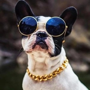 Cuban Link Thick Golden Chain Dog Cat Pets Safety Collar Stainless Steel Pet Dog Gold Chain 36 45cm Dogs Accessories