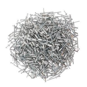 3mm-6.4mm Nail Decoration Aluminium Blind Rivets Pop Rivet Quality