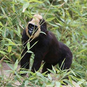 봉제 침팬지 동물 정원 동상 입상 - 실내 옥외 가정이나 사무실위한 최고의 아트 데코