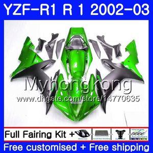 YAMAHA YZF-1000 YZF R1 YZF R1 2002 2003 바디 웍스 237HM.41 YZF 1000 YZF-R1 02 그린 핫 YZF1000 프레임 YZFR1 02 03 페어링