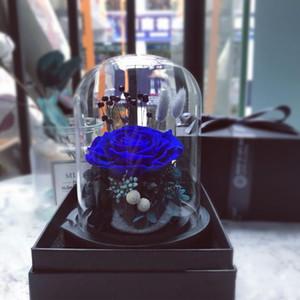 Sevgililer Günü Anneler Günü için Preserved Çiçekler Yüksek Kaliteli 9-10CM Çap Ölümsüz Gül Ev Dekorasyonu DIY Malzeme Hediye