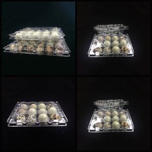 12 fori uovo di quaglia imballaggio del contenitore di colore trasparente in PVC di plastica Uova Contenitori Tray Factory Direct 0 27fl E19