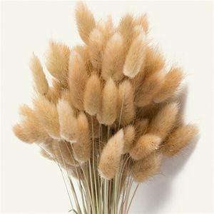 100 Pcs Drive Natural Lagurus Ovatus Bunches, Hare's Tail Gras, 50cm Length For Floral Decor T8190626