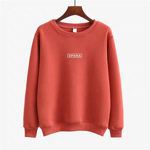 Autumn and Winter Korean version Sweater 2020 New plush and thickened warm round neck women's long sleeve loose super hot fashion Hoodies