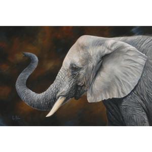 Handmade canvas art elephant portraits in oil Lucky elephant modern animal whhite paintings for living room