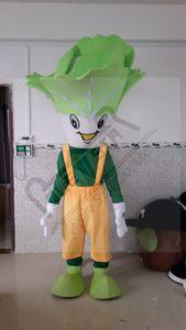 TRAJES POLE mascota de la estrella raddish col china trajes de la mascota verduras de zanahoria y tomate actores para caminar OEM