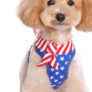 Dog Clothes Designer Pet Clothes Dogs Skirt Dog Skirt American Flag Pet Skirt Pet Apparel Free Shipping