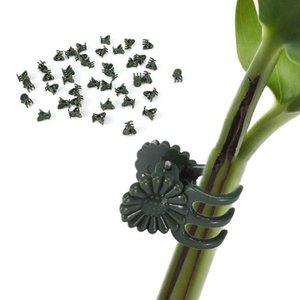10PCS Vine Plastic Plant Support Clips Garter Hanging Stems Decoration Orchid Stalks Fix Flower Grow Upright Grafting Tool