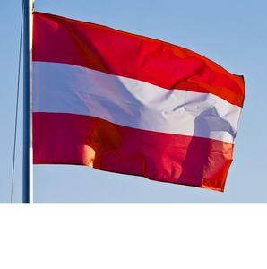 جودة عالية علم النمسا 90x150cm أعلام 1.5x0.9m 3X5 مخصص قدم الوطني النمساوي راية العلم AUT النمسا البوليستر الطباعة