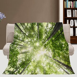Spring Warm Bed Versatile Blanket, Blanket, Misty Spring Forest With Sun, Use A Super Soft Blanket To Rest And Sleep Comfortably In Bed, TWI