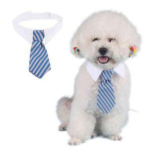 Chien Toilettage Chat Cravate Colorée À Rayures Noeud Animal À Rayures Collier De Cravate Collier Pour Animaux Cravate Réglable Cravate Blanc Chien Cravate Partie De Mariage