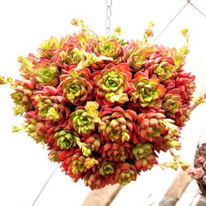 hängen Pflanzer Blumentopf Weide Metallblumenkorb Herzform runde Kugel shpe für Indoor Outdoor Saftige Kräuter