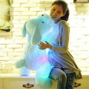 50 35cm Hot Sale Colorful Luminous teddy dog LED Light Plush Pillow Cushion Kids Toy Stuffed Animal Doll Birthday Gift for child