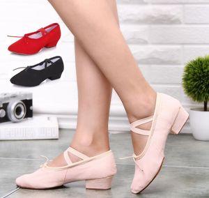 Caliente nuevo adulto zapatos de lona de tacón alto salón de baile latino zapatos de baile de las mujeres zapatillas de karate de fitness zapatillas planas zapatos de baile popular