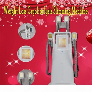 2019 New version portable cryolipolysis fat freezing slimming machine cryotherapy Ultrasound 4 handles can work together