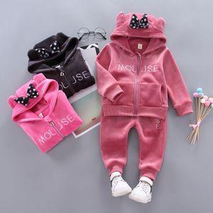2019 del muchacho del bebé embroma la ropa de deportes de la historieta fijados tapas Coat Hoodied pantalones 2pcs Sweatsuit la niña de Primavera Otoño traje OutfitsTracksuit