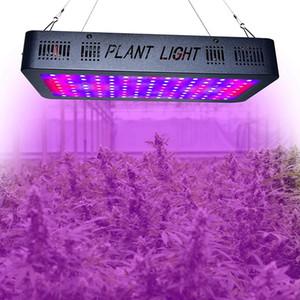 LED Grow Light Full Spectrum LED Grow Tente couvert maisons vertes lampe lampe plante pousse pour Veg Floraison Aluminium DHL
