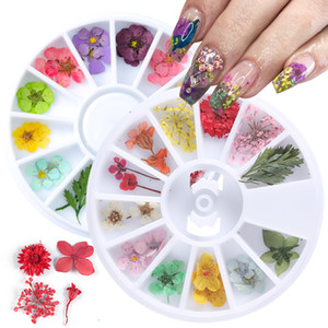 12 Türleri 3D Çiçekler Nail Art Dekorasyon DIY Güzellik Petal Çiçek Decal Sticker Kuru Çiçek Jel Polonya Aksesuarlar Kurutulmuş