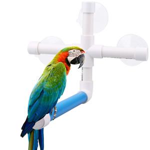 Pet Bird Toys Sucker Pappagallo Bagno Doccia Standing Platform Rack Parrot Standing Doccia Pesce persico Parrocchetto prodotto