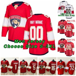 Florida Panthers Jersey Mike Hoffman Jersey Dryden caça Jamie McGinn Riley Sheahan Brady Keeper Red Hockey Branco camisas personalizadas costurado