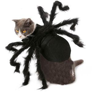 Halloween Pet Cosplay Spinne Kleidung Pet Dogs Kostüm Black Spider Kleidung Bat Role Play Dressing Up niedliche Kleidung Pet Dogs BH2339 TQQ