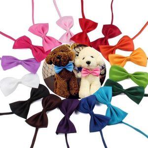 Ayarlanabilir Pet Köpek Bow Tie Boyun Aksesuar Kolye Yaka Köpek Parlak Renk Pet Bow Mix Renk Saf Renk Kravat YP914