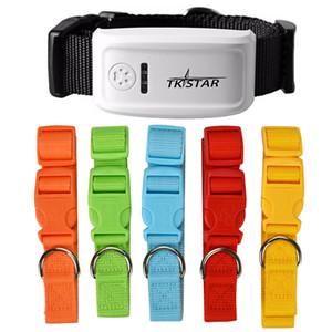 TKSTAR LK909 TK909 Küresel Yer Belirleme Real Time Pet GPS Tracker İçin Hayvan Köpek Kedi GPS Yaka Takip Ücretsiz Platformu ve Nakliye