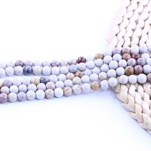 Perle di pietra naturale dell'oceano Fossil Jasper Bead 15 pollici filo per set per gioielli fai da te
