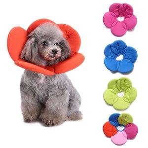 Pet Recovery Cone E-Collier pour Chats Chiens Fleur Elizabeth Dacron douce éponge de remplissage Collier de protection pour