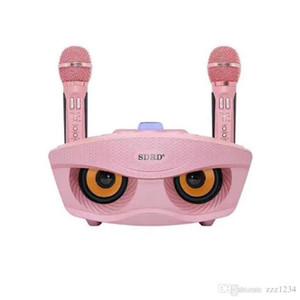 سفينة جديدة لاسلكية صوت مبدل ميكروفون المتحدث في الهواء الطلق المحمولة الهاتف المحمول Bluetooths كاريوكي الأسرة KTV DHL