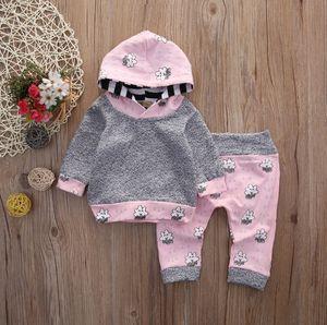 Baby Girl Clothes cloud Bebes con cappuccio Top Pantaloni insiemi 2pcs rosa abbigliamento per bambini inverno Set attrezzature del bambino 30lots DW4546