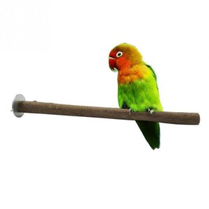 Pet Parrot Bird Cage Rohholz Astgabel Standzahnstange Perches Toy Vögel Standing Sticks
