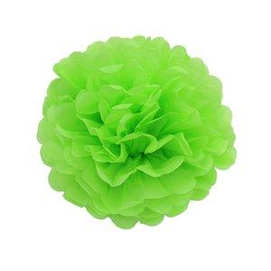 10 pieces per lot light green color Tissue Paper Pom Poms DIY Paper Flower Themed Party Hanging Decor Favor