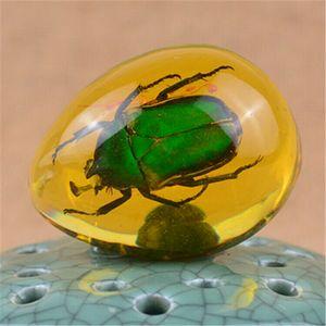 Creative resina ambra farfalla Scorpion Crabs Formiche Spider dell'insetto pietra ciondolo collana Piccola decorazione della casa