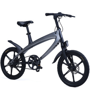 2018 Largest Factory sell 250w pedal assist 20inch Electric Bike ,Fat tire electric bicycle for adult,Free Tax to USA and Europe