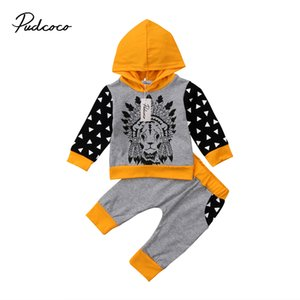 Newborn Baby Kids Boys Animals Lion Hooded Tops Long Pants 2pcs Clothes Outfits Set Casual Long Sleeve Cotton Clothing 0-24M