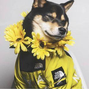 الذهبي المسترد الكلب الملابس الكلب معطف واق من المطر الوجه للحصول على الكلب الكبير الحيوانات الأليفة سترة الوجه معطف واق من المطر garden2010 pdaUA