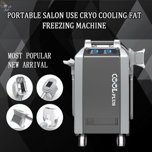 Portable 4 Handles Cryolipolysis for Double Chin  Cryolipolysis Double Chin with for Weight Loss CE DHL