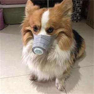 Máscaras limpiar la cara del animal doméstico a prueba de polvo Función Multi Perros Mascherine máscara de respiración boca con la moda de la válvula Diseño 8al2 H1