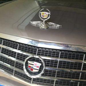 Cadillac ATS-L XTS CT6 CT6-Plug in ESCALAD XT5 griglia frontale in metallo 3D griglia frontale logo badge Emblem Sticker