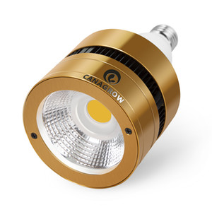 200W LED-COB-Glühlampe Full Spectrum LED wachsen Betriebslampe 3500K wachsen für Zimmerpflanzen Gewächshaus Gemüse Blüte Blüte