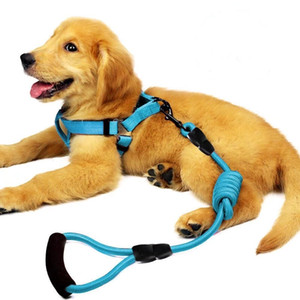 Dog Leash Harness Set, Durable Adjustable Heavy Duty No Pulling Dog Harness + Leash for Pet Dog Training Walking Running.