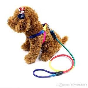 Venta caliente perro diseño del arco iris Correas de nylon del material 1,2 metros de largo mango firme comvenient fiable broche metálico perspectiva hermosa uso diario