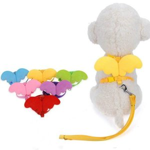Cute Angel Pet Dog Leashes and Collars Set Puppy Leads for Small Dogs Cats Designer Adjustable Dog Harness Pet Accessories